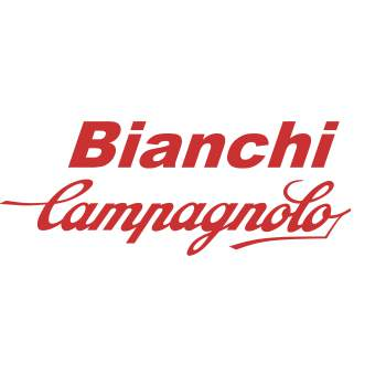 Bianchi Rennrad 2020